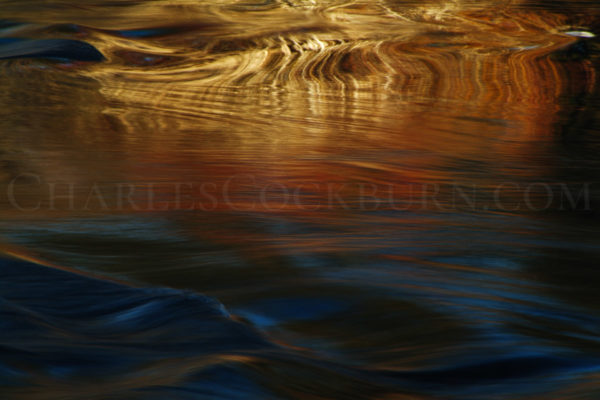 Fall River Golden Reflection at CharlesCockburn.com