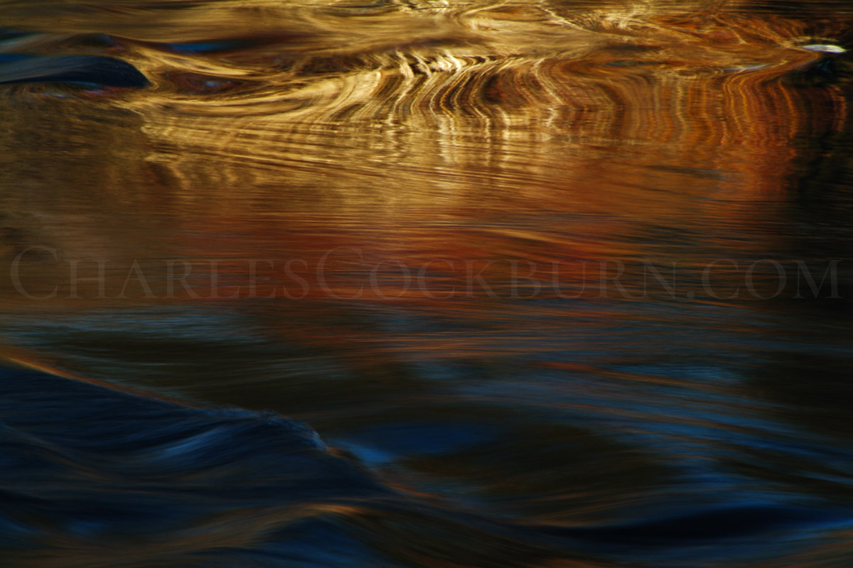 Fall River Golden Reflection at CharlesCockburn.com