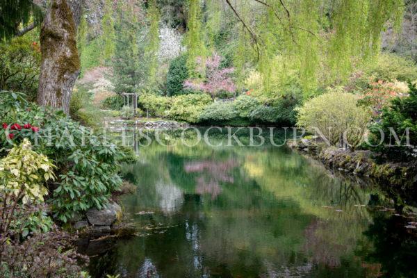 Garden Calm at CharlesCockburn.com